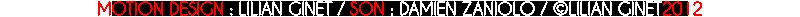 Logo Video Audioptima Details