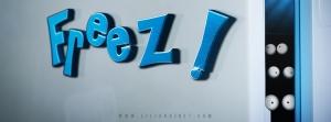 Freez ! Bandeau Facebook Web Série